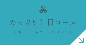 たっぷり1日コース